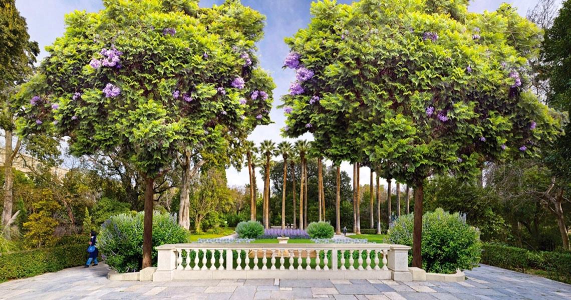Εθνικος-Κηπος