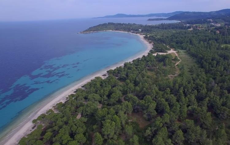 Γλαρόκαβος: Η γαλάζια λίμνη της Χαλκιδικής