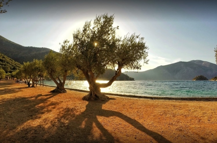 Ithaca: On this beach, according to the legend is the place that Odysseus landed