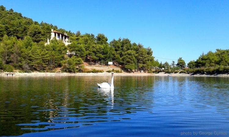 Λίμνη Μπελέτσι μονοήμερες κοντά στην Αθήνα