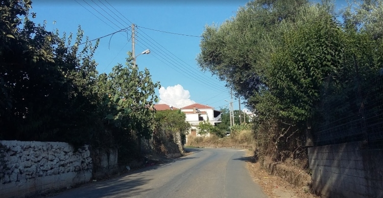 Κρεμμύδια ελληνικό χωριό